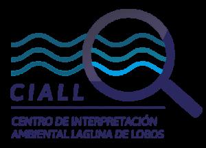 ciall-logo